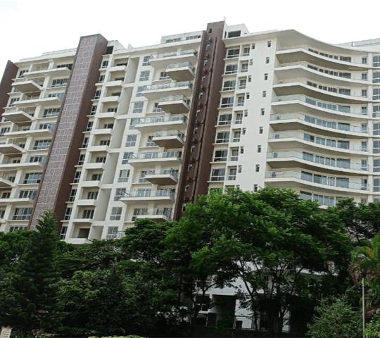 La Palazzo West Elevation View